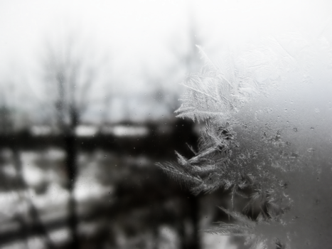 Frosted_Window-resized-600